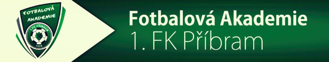 1.FK Příbram – ročník 2011